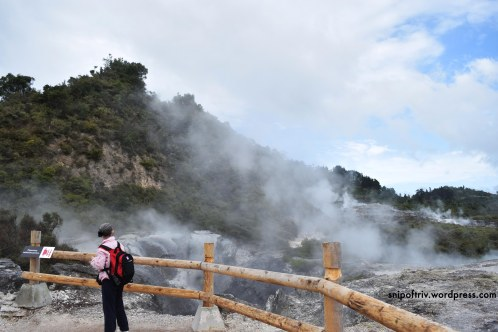 geyser6